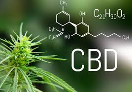 Digging deep into CBD products