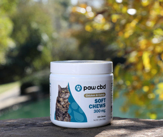CBD Kidney Support Soft Chews for Cats SALMON- 150/300 MG - 150 COUNT
