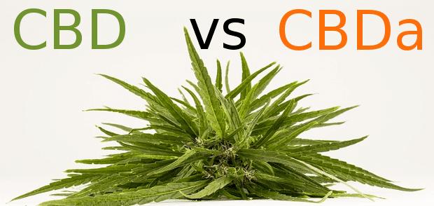cbd vs cbda e1553996261792